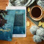 التسكع مع الشيطان رائعة الكاتب المغربي عبد الحق الصولاحي
